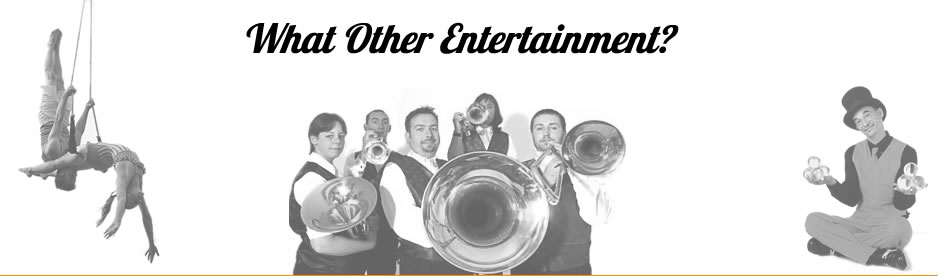 Other Entertainment? Bespoke Comedy Entertainment